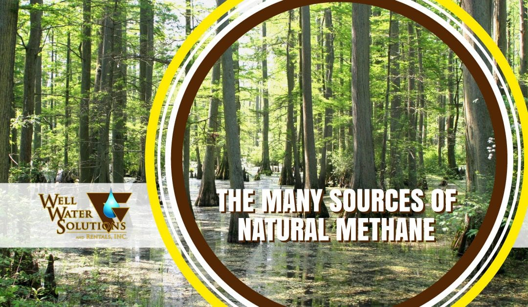 The Many Sources of Natural Methane in the World